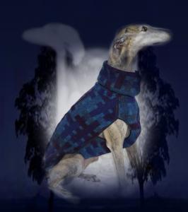 Niveauvolle Hunde- und Windhundmode